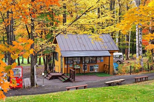北海道|妖精森林.優美秋色不過是新富良野王子住客的休憩地
