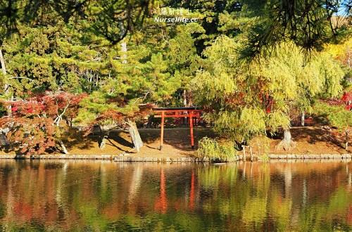 大阪出發|伏見稻荷大社+清水寺+東大寺・奈良公園巴士一日遊
