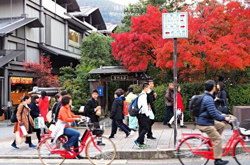 京都|嵐山楓葉季限定.京馬車、保津川遊船、漫步天龍寺、美足按摩
