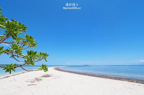 宿霧跳島:帕米拉坎島、巴里卡薩島、處女島一日遊 Bohol Island Hopping: Pamilacan, Balicasag, and Virgin Island.