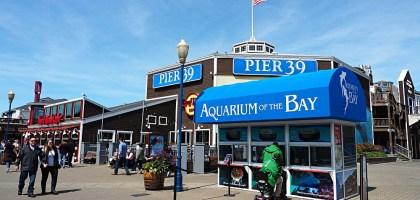 舊金山漁人碼頭 Pier 39有吃有玩有還可看海獅