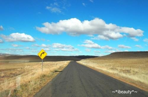 澳洲自駕注意事項:不同的行車習慣與常見交通號誌
