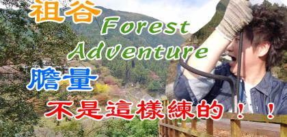 德島【祖谷 Forest Adventure】膽量不是這樣子練的啦!