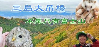 靜岡|三島大吊橋(天空步道).充滿體驗活動的日本第一長的吊橋