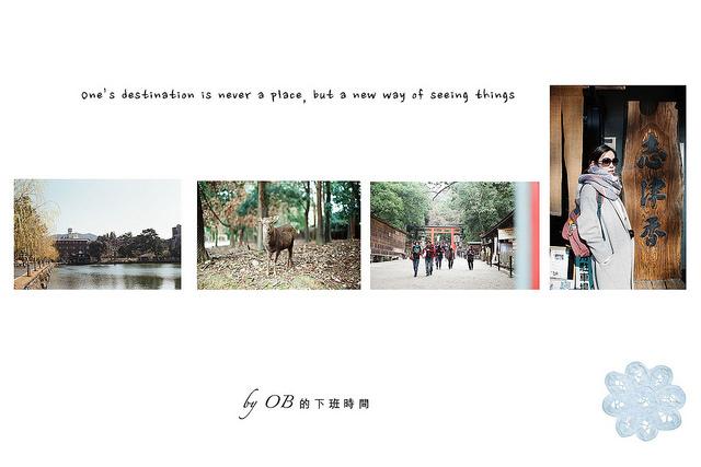 |奈良|✿ 奈良公園、春日大社 & 必吃志津香、大佛布丁、呼吸巧克力