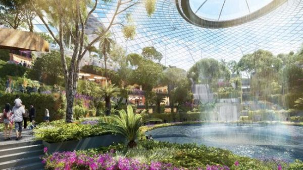 Taman dalam ruangan yang nantinya akan dibangun di Bandara Changi (Foto: News)