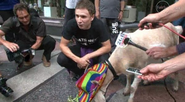 Gary, kambing yang dipenjara (Foto: SMH)