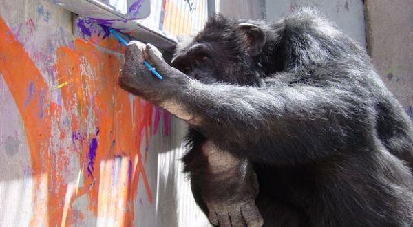 Clay yang melukis (Foto: The Mirror)