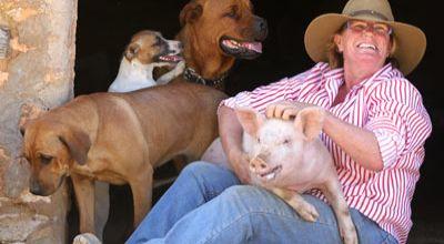 babi yang dikira anjing (Foto: Orange)