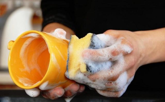 Hasil gambar untuk ganti sponge dan lap piring