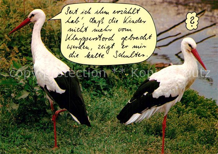 Ak Ansichtskarte Storch Humor Kat Tiere Nr Kc61862 Oldthing