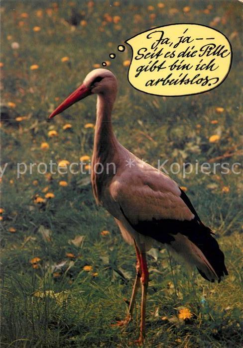 Ak Ansichtskarte Storch Humor Spruch Kat Tiere Nr Kc61869