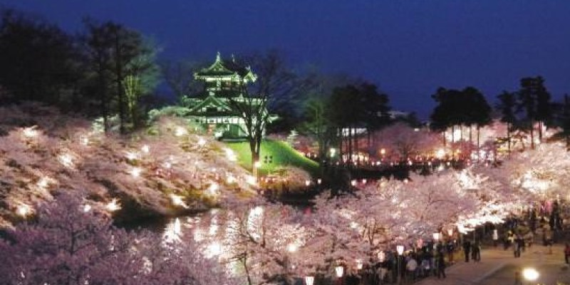 日本三大夜櫻►2016新潟高田城夜櫻情報整理(4/1~4/17)含前往方式、會場地圖、流程