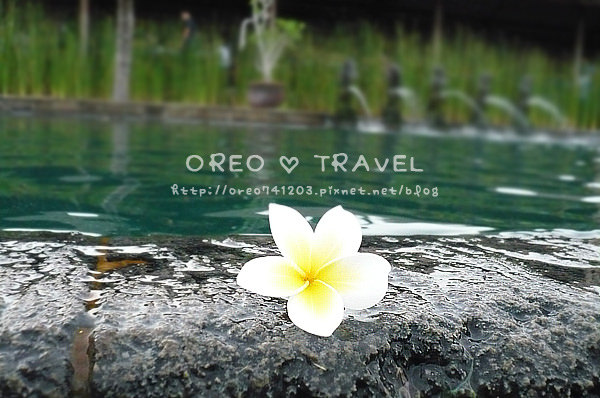 【峇里島。行程】烏魯瓦度美景下午茶~峇里島必到美景!!快進來看照片~