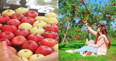 青森蘋果必遊行程!蘋果全餐、蘋果下午茶、泡蘋果湯、採蘋果~弘前蘋果公園