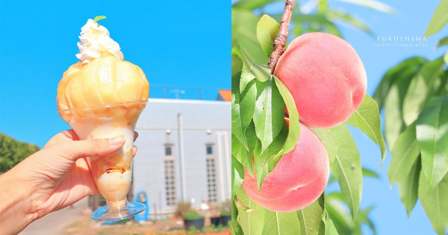 福島まるせい果樹園|超甜水蜜桃800日幣吃到飽~買一整箱13顆也才1000日幣!