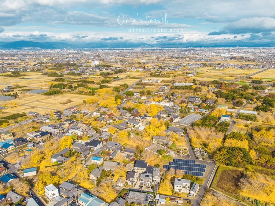 名古屋銀杏景點│祖父江~日本最大的銀杏之鄉!遍布整個稻澤町的超美銀杏(含交通整理、禁止拍照區域說明)