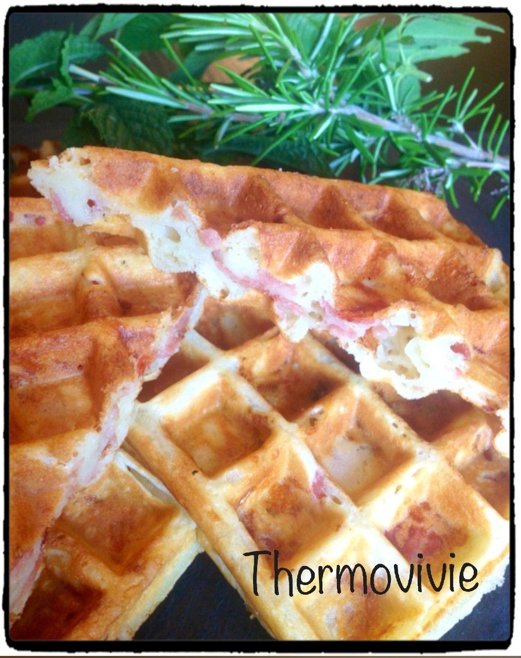 thermovivie