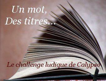 """Lu dans le cadre du challenge """"Un mot, des titres"""", session 18 (un titre avec le mot """"soeur"""")."""