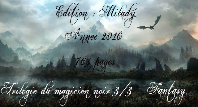 [Chronique] La trilogie du magicien noir. 3, Le haut seigneur, de Trudi Canavan