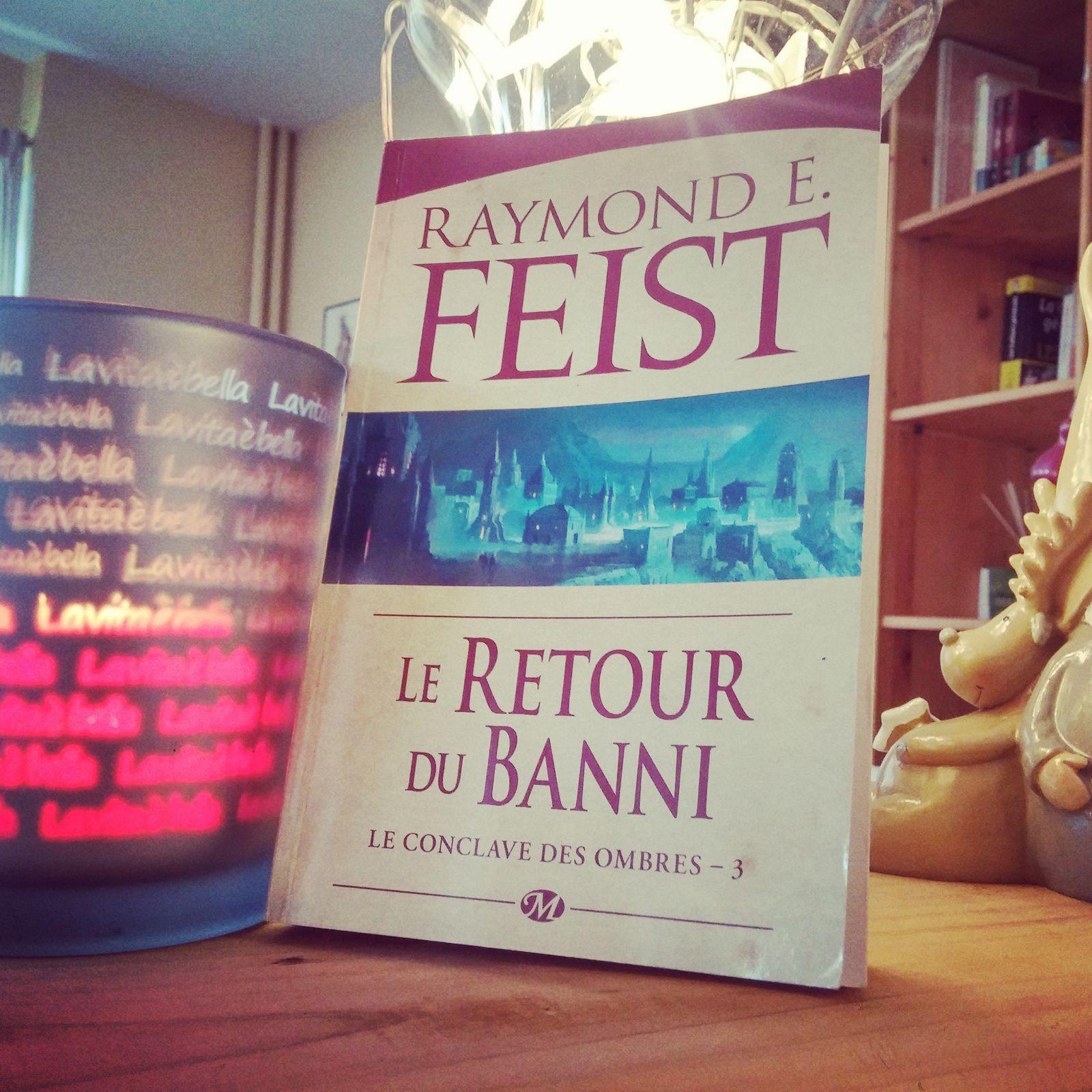 JOUR 13 du #neverlandpbc de Décembre 2016 : une fin ouverte... #leretourdubanni de #raymondefeist car il ouvre la voie pour la trilogie suivante...
