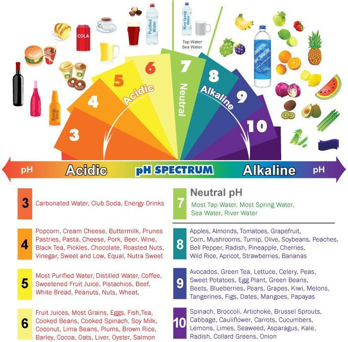 Aliment Alcalin