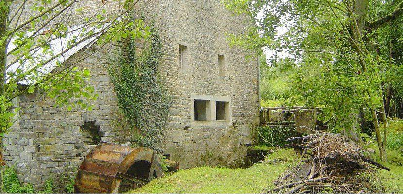 le Moulin de la Forêt situé à Le Mesnil-Villeman.