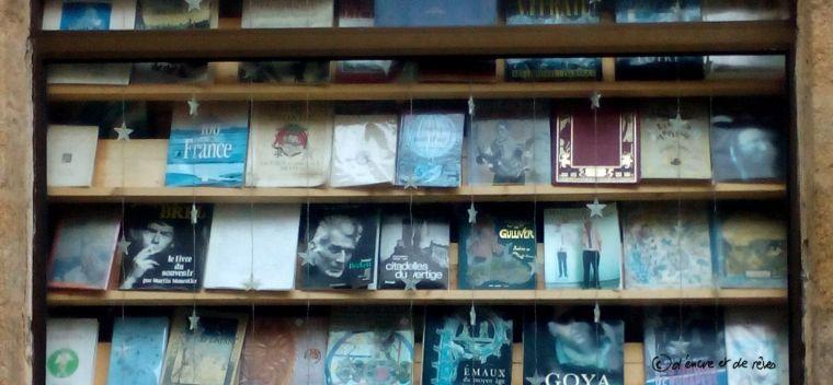 Article du dimanche n°12: Vers la fin des petites librairies ?