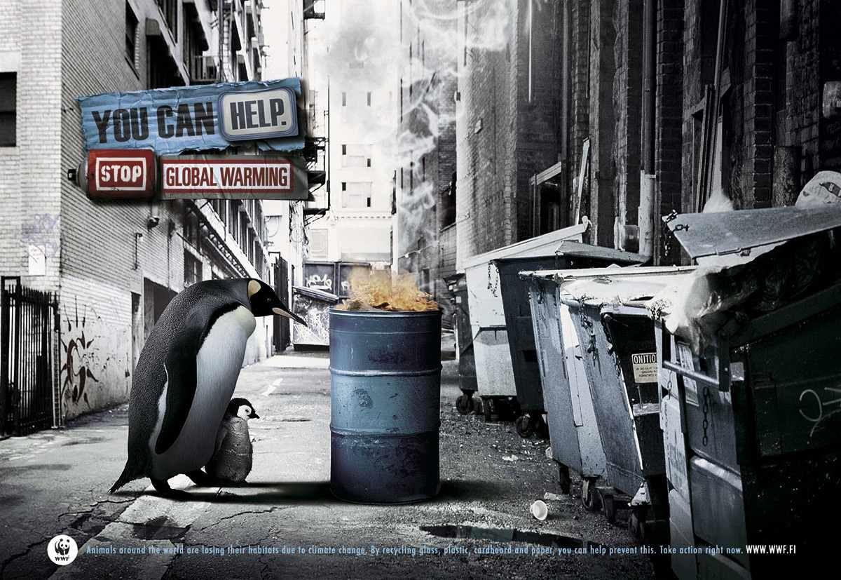 Travail d'HDA sur la campagne de WWF