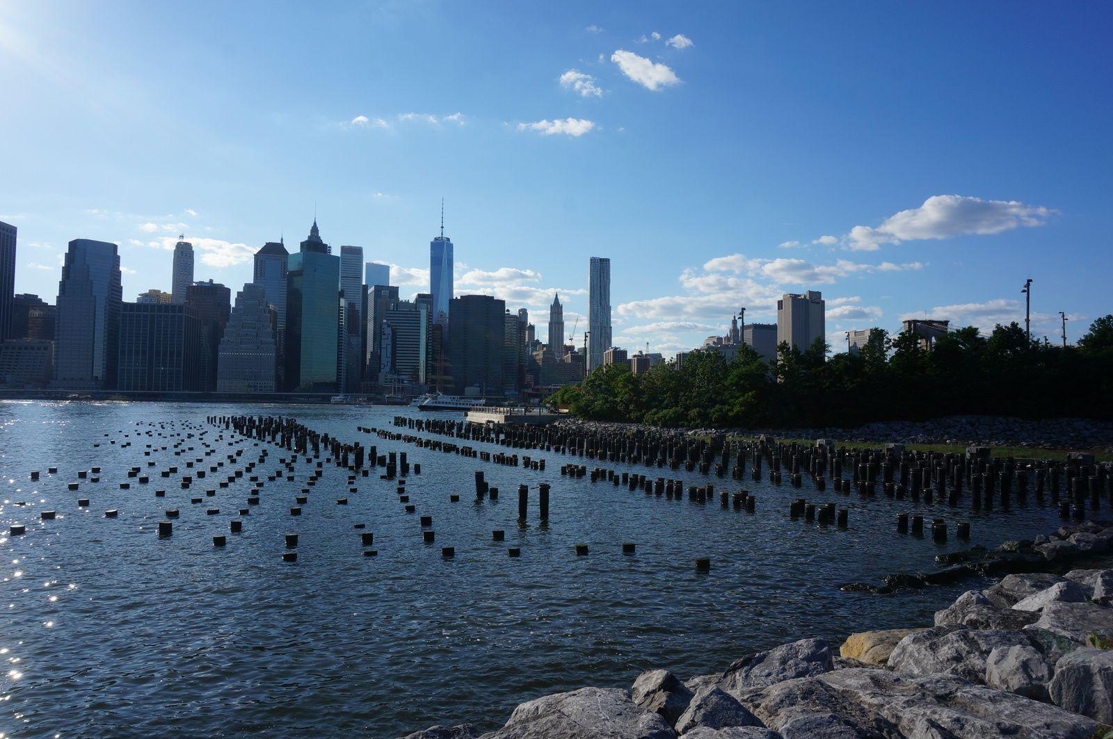 Jardin botanique New York + southampton