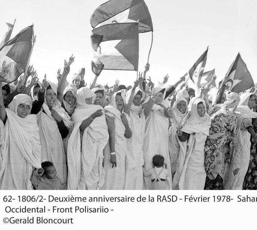 LE FRONT POLISARIO : SAHARA OCCIDENTAL