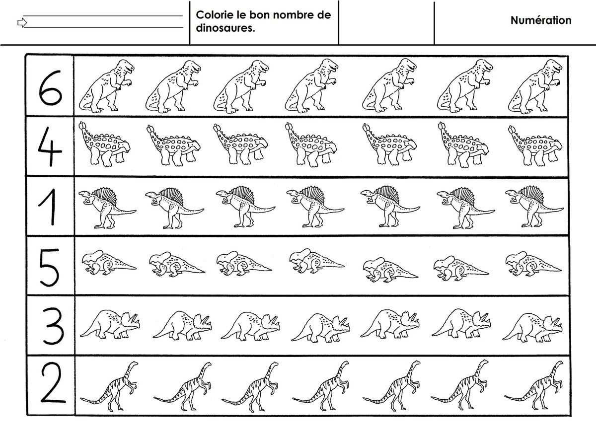Dinosaures Numeration A 6