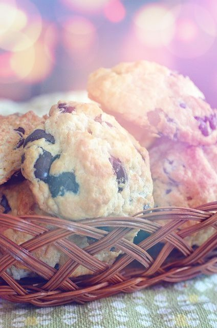 Food : Chocolate Scone