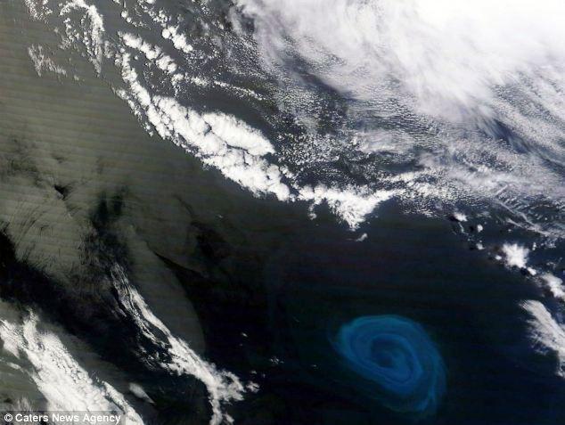 De plus en plus nombreux les inquiétants trous noirs dans les océans… !