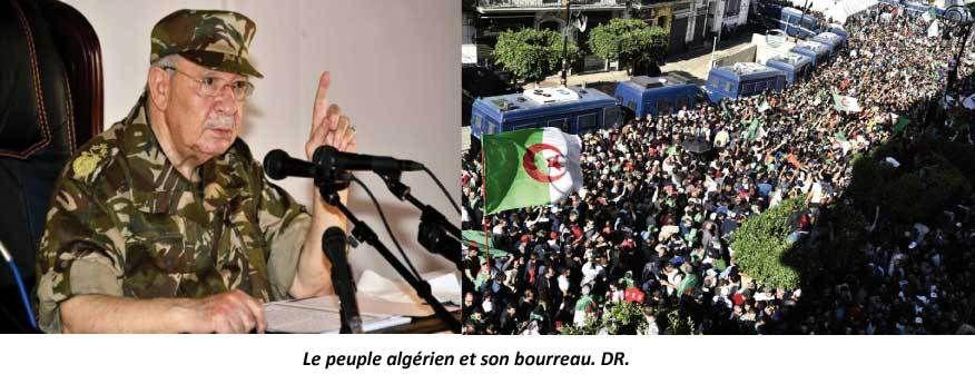 L'Algérie de Gaïd Salah entre le cachir et la campagne... d'arrestations