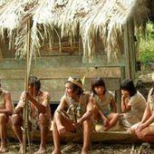 Pérou - L'alphabet de la langue originaire Iskonawa rendu officiel - coco Magnanville