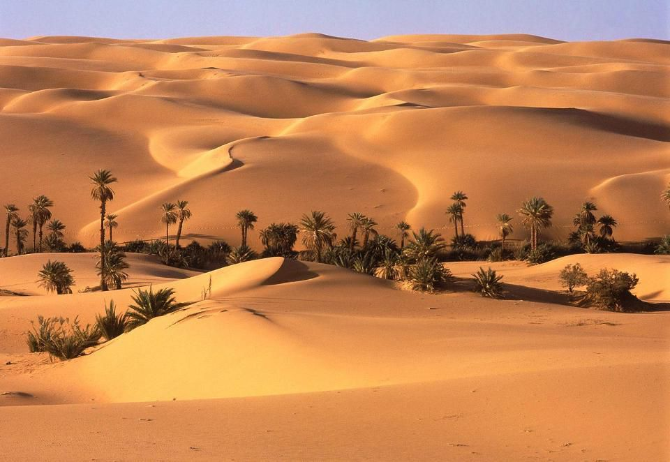 Image result for Zunairah al-Rumiya