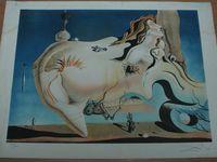 S. Dali. Traces importantes de mouillures et présence de salissures qu'il faut enlever.