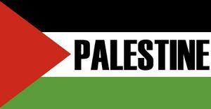 Plus de 400 mineurs palestiniens sont emprisonnés en Israël