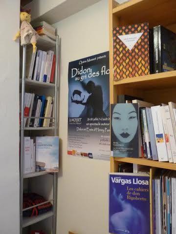 La bibliothèque des gens #9 : la bibliothèque de Jean-Luc