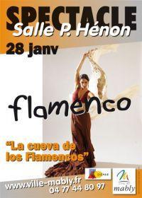 Concert Flamenco-4bc3a33c