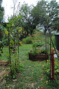 jardin-partage-de-st-michel-maurienne-0101.JPG