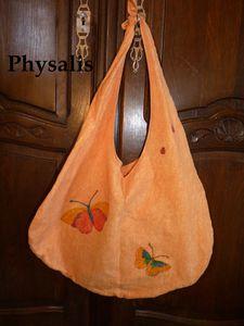 sac papillon et cocci1