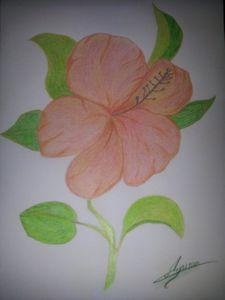 Fleur de passion - dessin aux crayons - photographié à pl