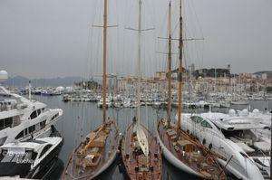 Midem2012-patkaas-024--c-Brigitte-Lachaud---c-Brigitte-La.JPG
