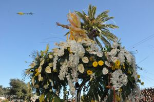 Bataille de Fleurs 22022012 061 [© Brigitte Lacha-copie-1