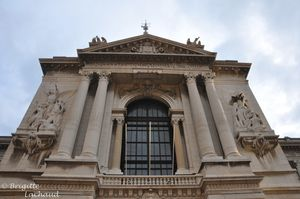 Monaco-musee-oceano211212-160--c-Brigitte-Lachaud-.JPG