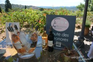 les-eleonores-Fayence250613-BL-004.JPG