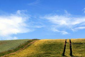 Umland:Landschaft 4287