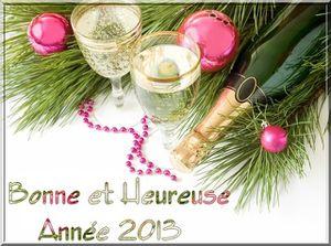 Tres-Bonne-Annee-2013-a-tous
